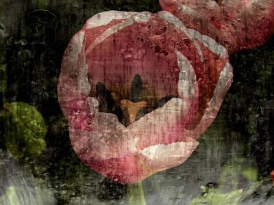 Beautiful Decay Print by Bonnie Bruno