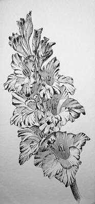 Beautiful Gladiolas Print by Eleonora Perlic
