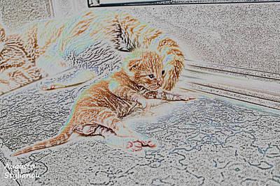 Soulful Eyes Digital Art - Beautiful Kitten by Augusta Stylianou