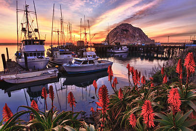 Beautiful Morro Bay Print by Beth Sargent