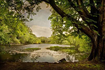 Beauty Of Ireland Print by Cheryl Davis