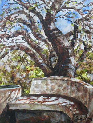 Shadows Painting - Bench At Dbg by Sandy Tracey