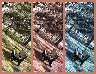 Bench In The Park Triptych  Print by Susanne Van Hulst
