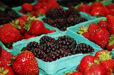 Berries Print by Cathie Tyler