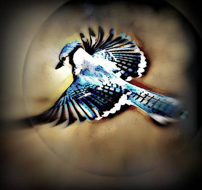 Bluejay Mixed Media - Betty Bluejay by YoMamaBird Rhonda