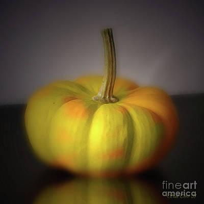 Buy Digital Art - Big Pumpkin by Bruno Santoro