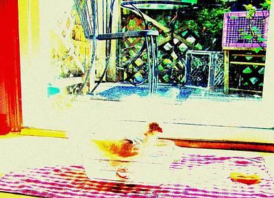 Bird Bath Print by YoMamaBird Rhonda