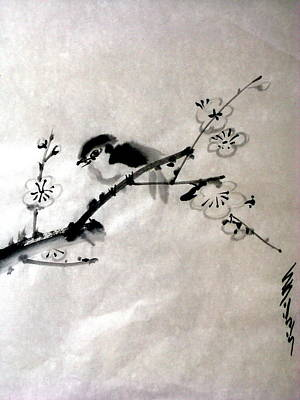 Bird In Plumtree Print by Sid Solomon
