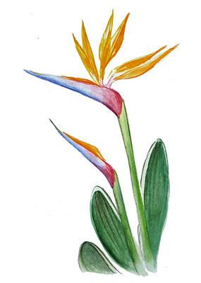 Bird Of Paradise Card Print by Irina Sztukowski