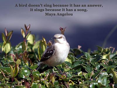 Mockingbird Digital Art - Bird With A Song by April Wietrecki Green