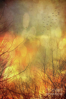 Birds In Flight At Sunset Print by Sandra Cunningham
