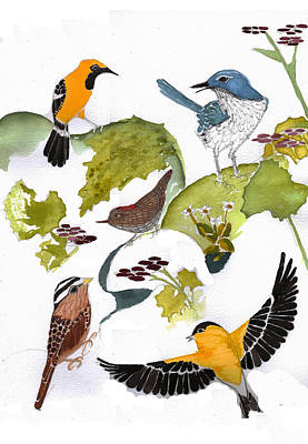 Birds In My Backyard Second In The Series Print by Alexandra  Sanders