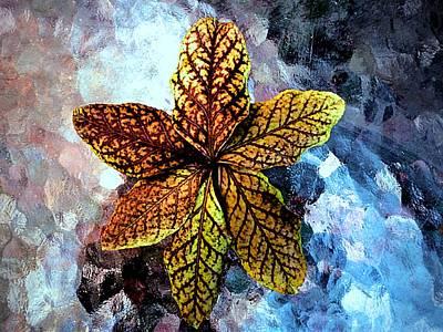 Bittersweet Leaves Print by Beth Akerman
