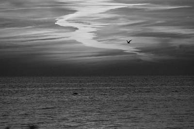 Whites Print featuring the photograph Black And White Sunset by Aimee L Maher Photography and Art Visit ALMGallerydotcom