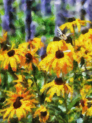 Black Eyed Susans II Print by Jai Johnson