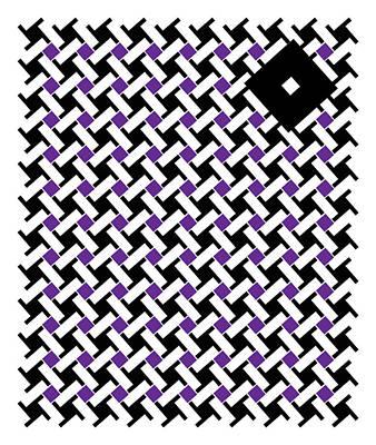 Black Flag 4. Print by Nancy Mergybrower