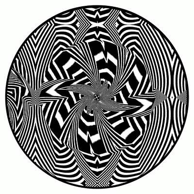 Black Flower Print by Visual Artist  Frank Bonilla