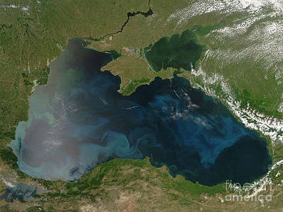 Black Sea Phytoplankton Print by Nasa