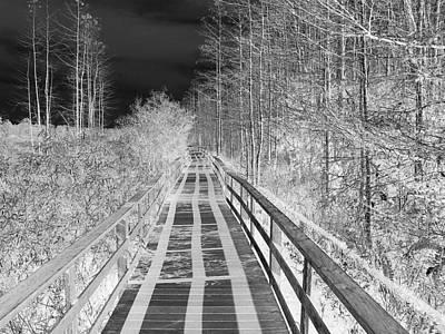 Black Sky White Shadows Print by Bill Lucas