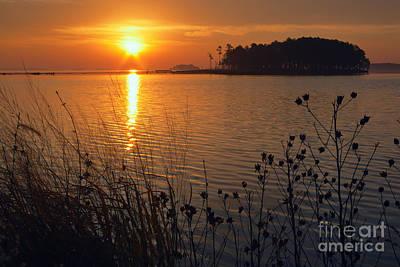Blackwater Sunrise Print by Susan Isakson