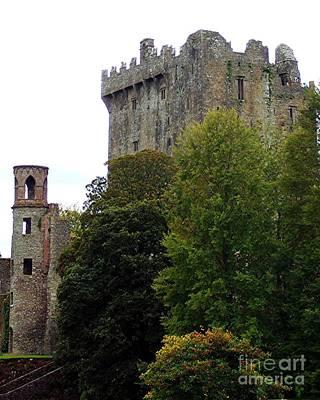 Blarney Castle Of Ireland Print by RL Rucker