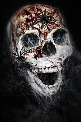 Spiderweb Photograph - Bloody Skull by Joana Kruse