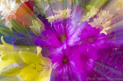Bloom Zoom Print by Charles Warren