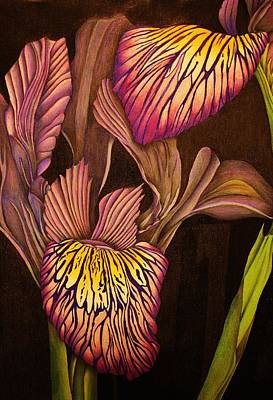 Blending Drawing - Blooming Irises by Bruce Bley
