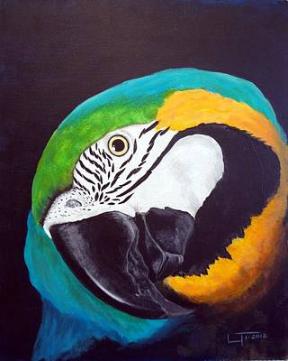 Blue And Gold Macaw Painting - Blue And Gold by Laurilee Taylor