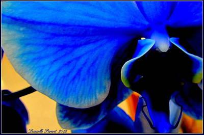 Blue Diamonds Orchids Print by Danielle  Parent