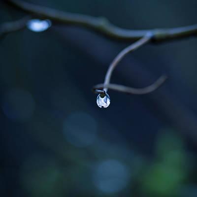 Blue Drop Print by Photography by Gordana Adamovic Mladenovic