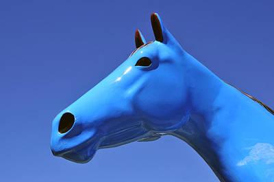 Blue Horse Print by David Lee Thompson