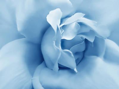 Blue Pastel Rose Flower Print by Jennie Marie Schell