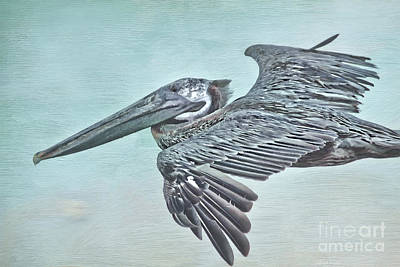 Pelican Mixed Media - Blue Pelican by Deborah Benoit