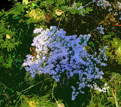 Blue Wild Flowers Print by Mindy Newman