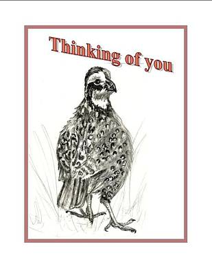 Thinking Of You Drawing - Bob White  by Carol Allen Anfinsen