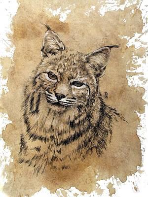 Bobcat Original by Debra Jones