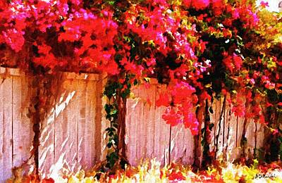 Bougainvillea Print by Brian D Meredith