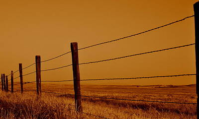 Nature Photograph - Boundary by Rima Biswas