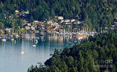 British Photograph - Brentwood Bay Vancouver Island Bc Canada by Andy Smy