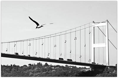 Bridge And Seagull, Bosphorus, Istanbul, Turkey Print by Gulale