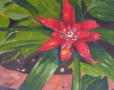 Painting - Bromeliad Bloom by Maria Soto Robbins