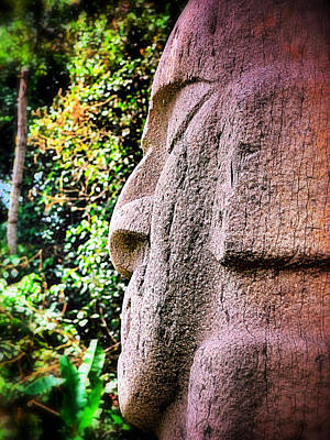 Skiphunt Photograph - Buddha Nature by Skip Hunt