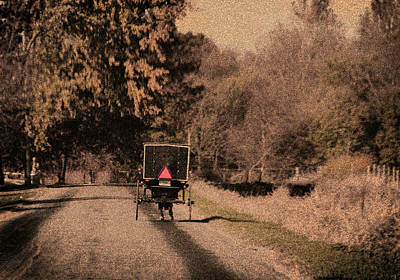 Amish Photograph - Buggy by David Arment