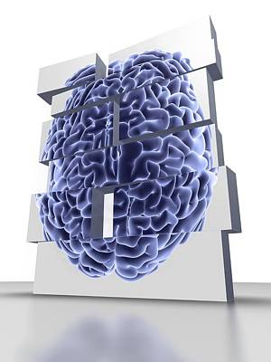 Building Blocks With Brain, Artwork Print by Pasieka