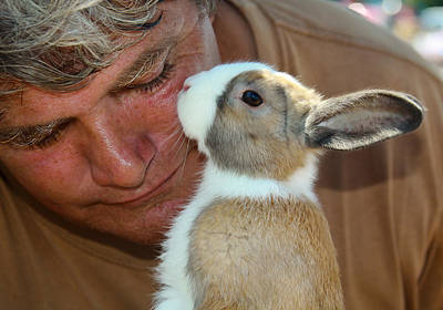 Bunny Kisses Print by Theresa Johnson
