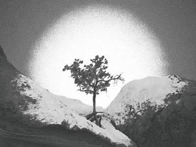 Burning Bush Digital Art - Burning Bush 1 by Carolina Liechtenstein