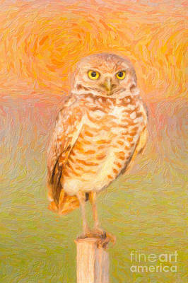 Impasto Oil Photograph - Burrowing Owl Impasto by Clarence Holmes