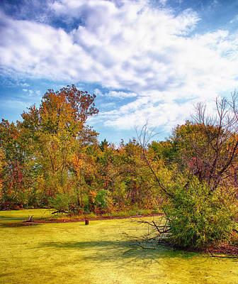 Busch Wildlife Swampy Autumn - 2 Print by Bill Tiepelman