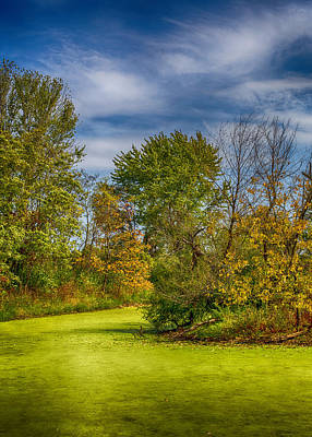 Busch Wildlife Swampy Autumn Print by Bill Tiepelman